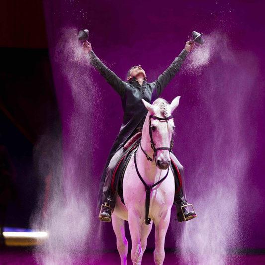 cabaret equestre 2